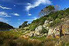 Mimosa Rocks National Park by Darren Stones