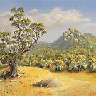 Tidbinbilla, Australia by wetherellart