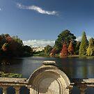 Sheffield park gardens in Autumn by miradorpictures
