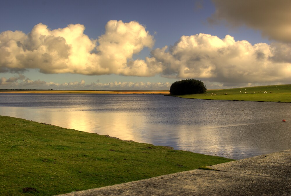 Crowdy Reservoir Bodmin Moor by David Wilkins