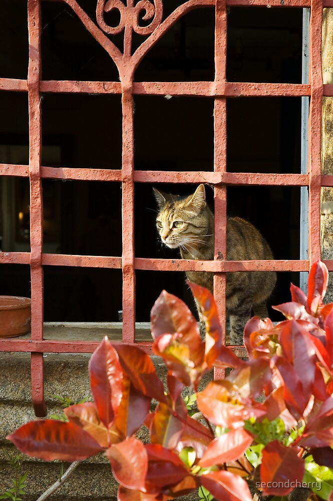 Evie at the Window by secondcherry