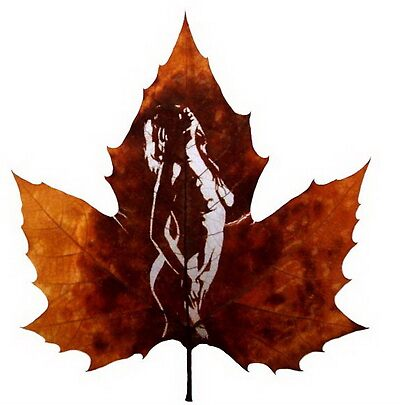 leaf art,leaf carving,carving art by Victor Liu