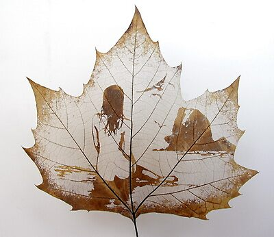 leaf art-- carving on natural leaf by Victor Liu
