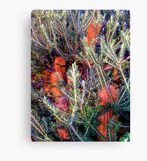 a brush with orange... Canvas Print