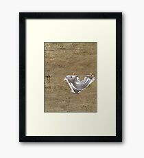 Undies on Line Framed Print