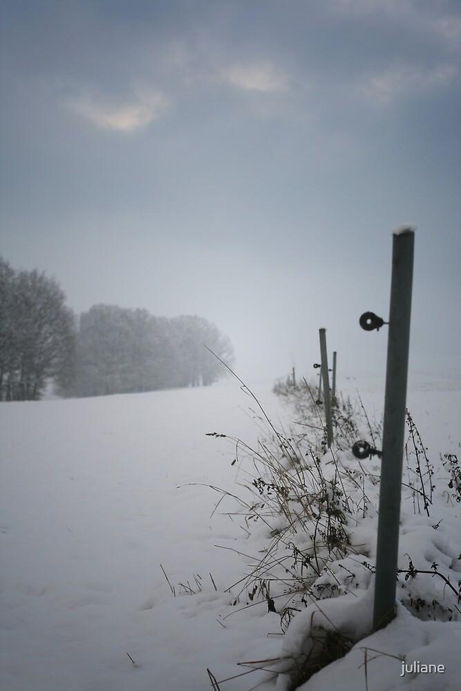 winter by juliane