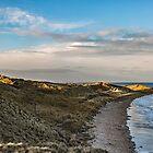 Bamburgh Coastline by Reg-K-Atkinson