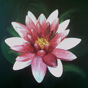 Water Lily by pacesophie