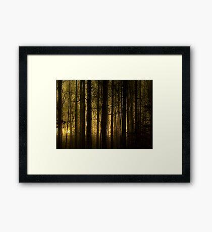 Glow 1 Framed Print