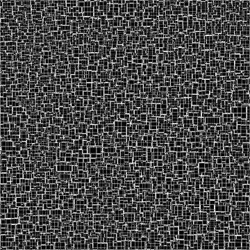 Black & White 13 by hannzoll