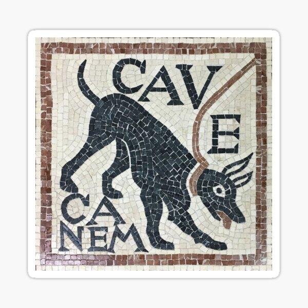 Cave Canem Beware of Dog Sticker