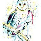 Barn Owl - Hoot by Lisa Whitehouse