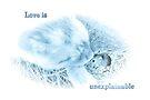 Love is ..... by missmoneypenny