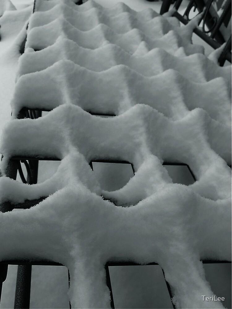 Snow by TeriLee