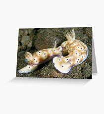 Nudibranch Foreplay Greeting Card