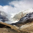 The Columbia Icefields by Amanda White