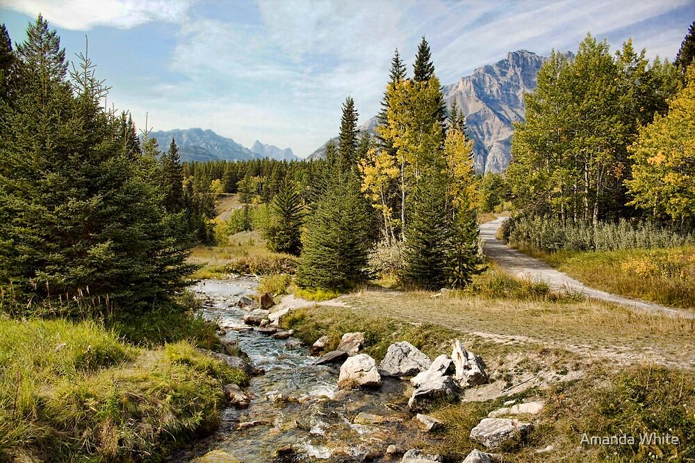 Brook at Johnson Lake, Banff by Amanda White