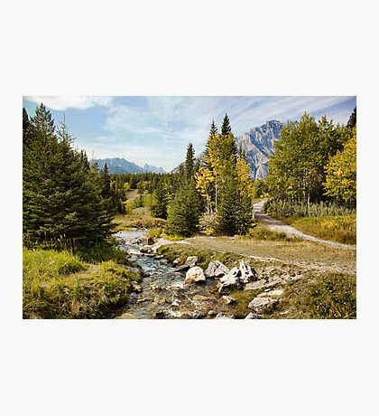 Brook at Johnson Lake, Banff Photographic Print