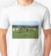 Rare Breeds Of Horses Unisex T-Shirt