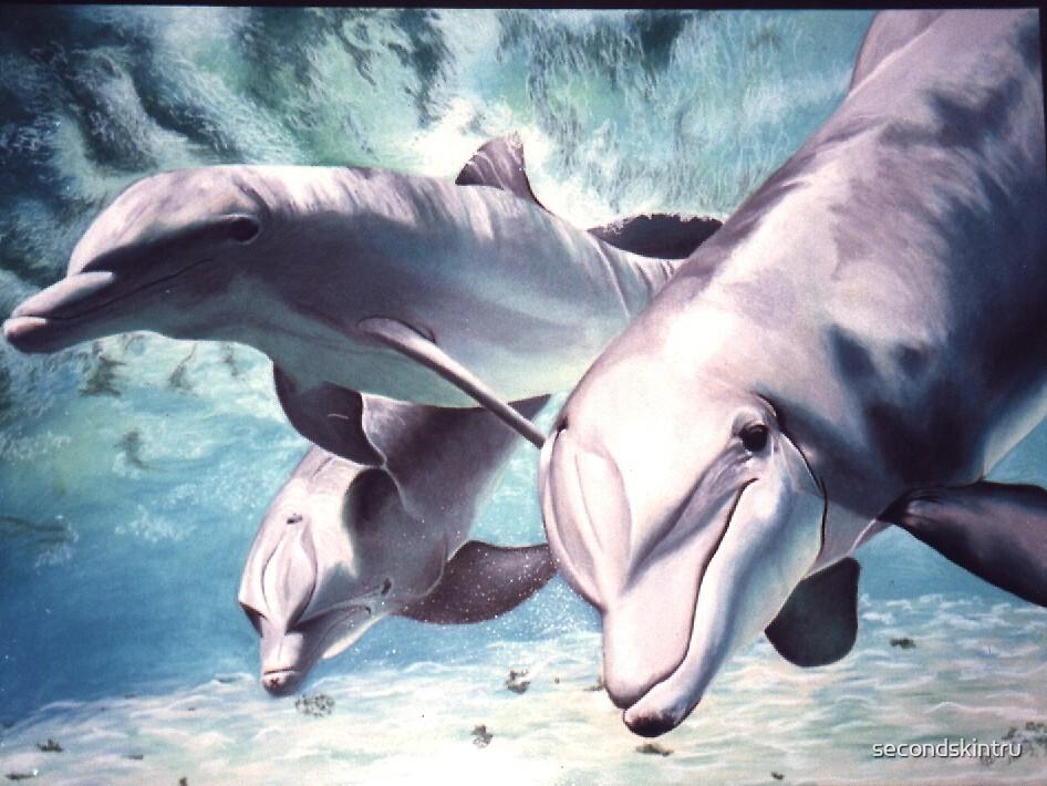 dolphins by secondskintru