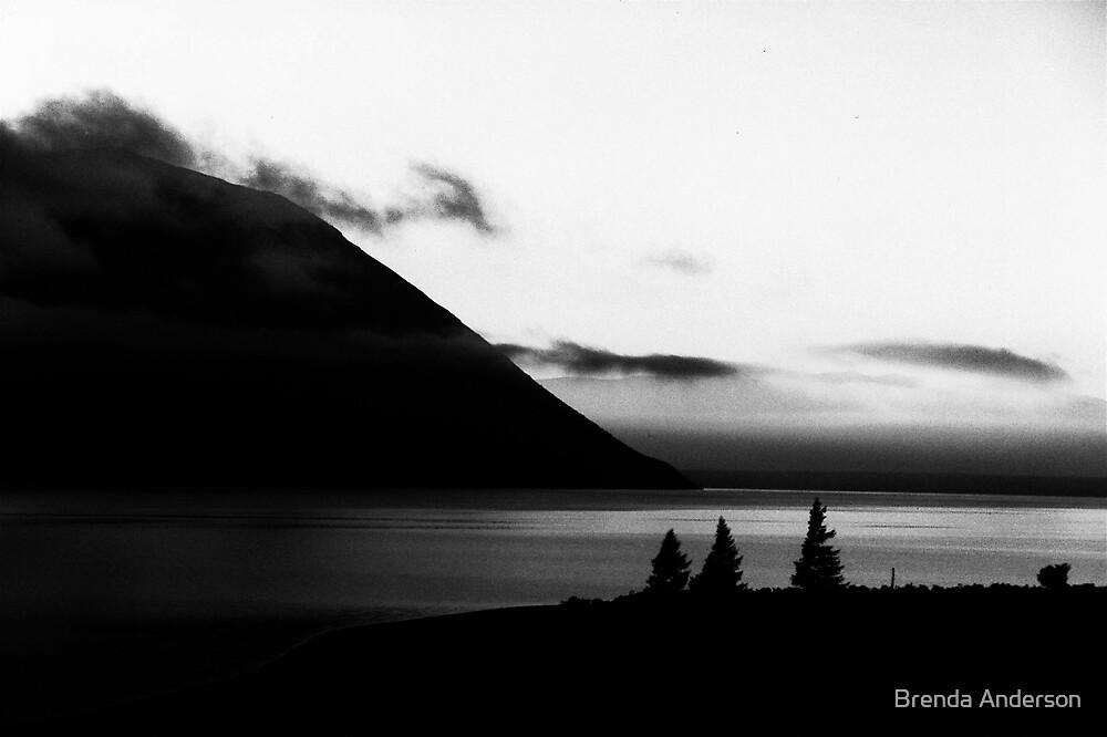 Lake Ohau at Dawn (B&W) by Brenda Anderson