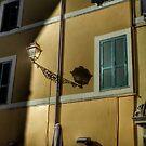 Streetlamp in Rome by hans p olsen