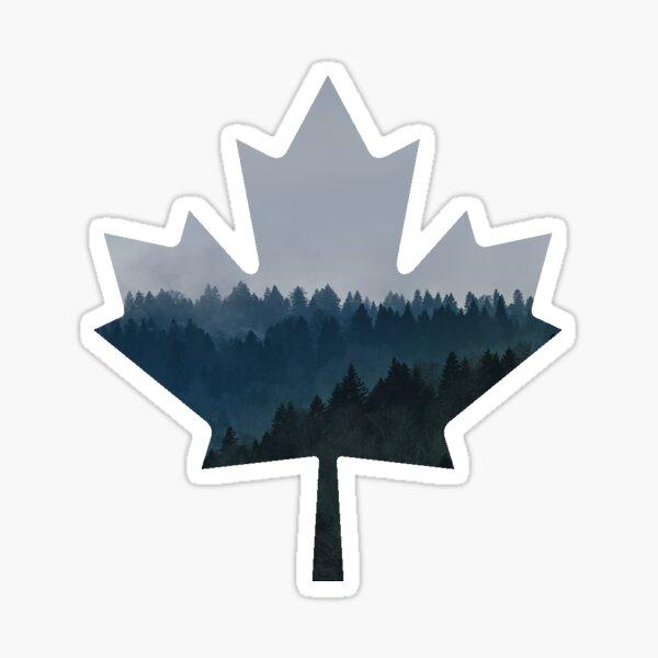 Forêt Bleue - Feuille d'érable canadienne Sticker
