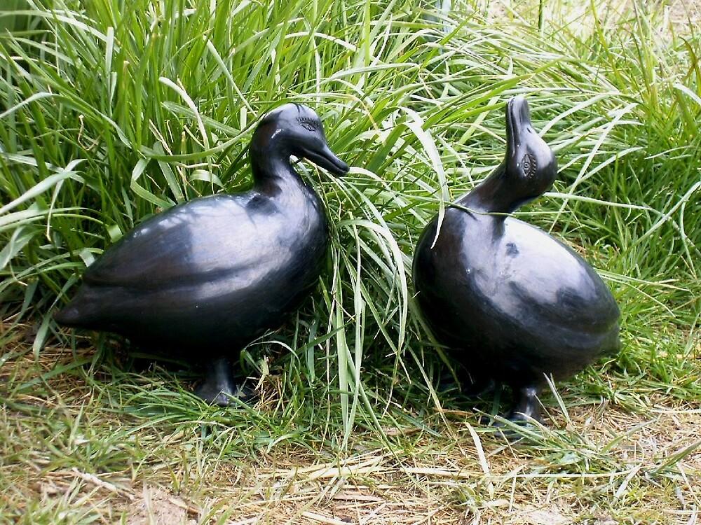 Dona Rosa ducks by boondockMabel