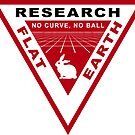 RESEARCH FLAT EARTH PERSPECTIVE GRID PATCH by GLOBEXIT