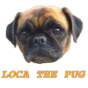 Loca, the pug that couldn't run; rip, soar high loca :'( by SpaceFizz