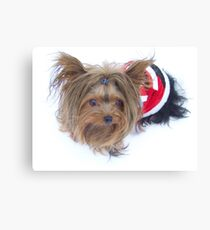 Baby Claus Canvas Print