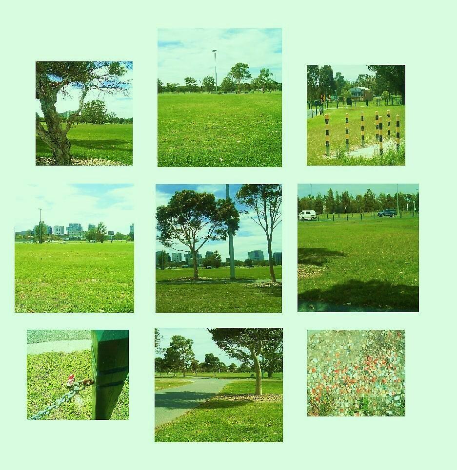 Parkland Views by monica98