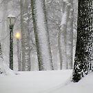 Snowy day in New York City  by Alberto  DeJesus