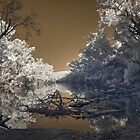 Murray River IR by BigAndRed