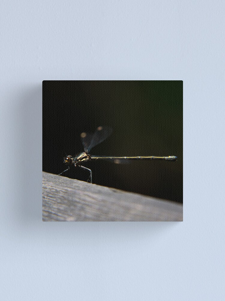 Alternate view of Dragonfly Canvas Print