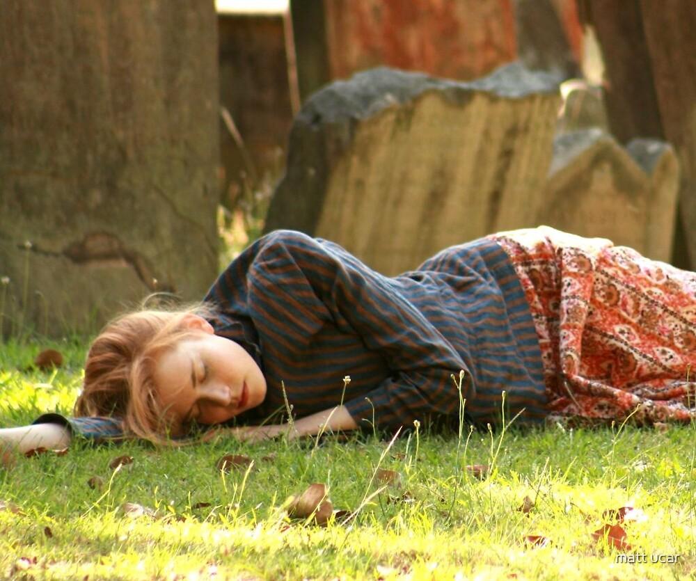 dreaming in a dream by matt ucar