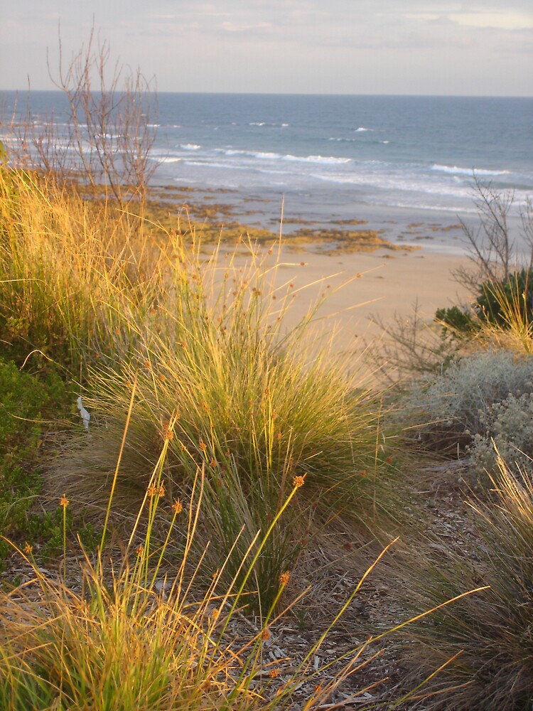 torquay beauty1 by melindapoll