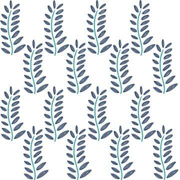 Ferns by paviash