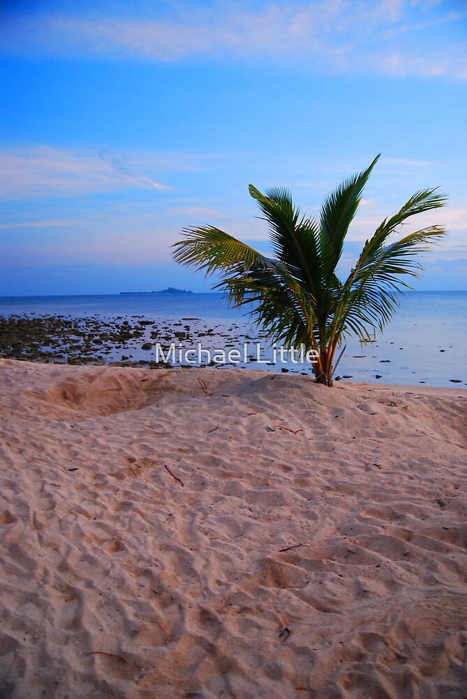 Turtle Island Sunrise by Michael Little