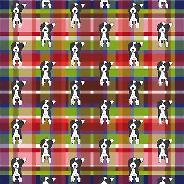 Black and White Doodle Dog - Red Blue Green Tartan - Declan by SterreStudio