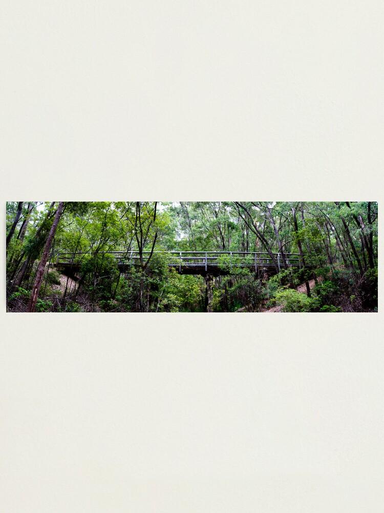 Alternate view of Old railway bridge Photographic Print