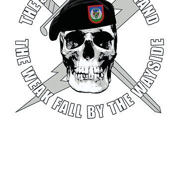 Air Force TACP Skull by 5thcolumn