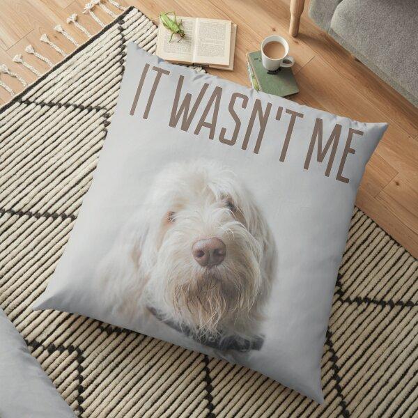 It wasn't me! Floor Pillow