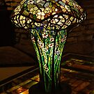 Table Lamp by Sandy Keeton