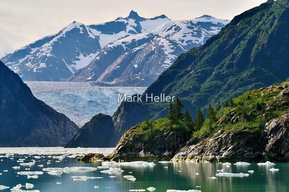 S. Sawyer Glacier by Mark Heller