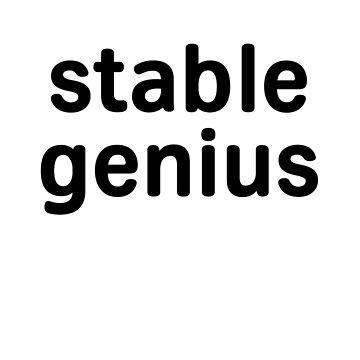 Stable Genius (Lowercase Simple Black Print) by TheVeeboo