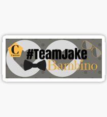 Team Jake Grey Mug Sticker