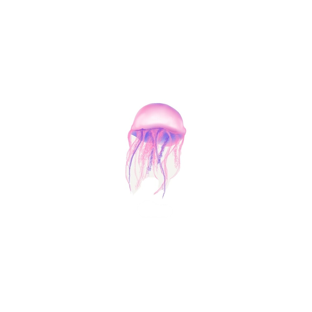 Jellyfish by Melissa Middleberg