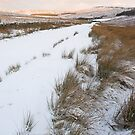 Snow Road by NaturalBritain