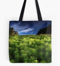 The Meeting of Mare's Tails Tote Bag